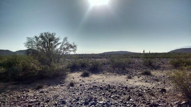 Heat radiates in the hot desert autumn 2014. (c) 2015 Patricia J. Angus